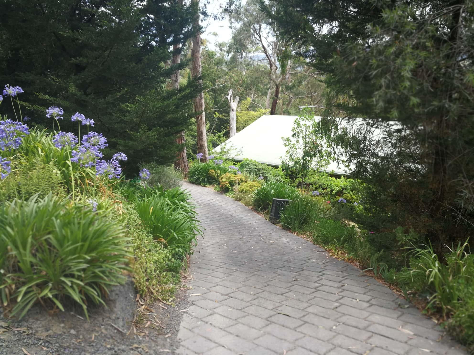 Preston House Removal to Belgrave - image IMG_20190116_114417_resized_20190117_082822406 on https://www.one2oneremovals.com.au